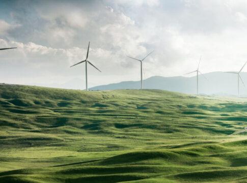 La sostenibilità è anche una questione di business?